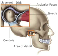 Osteopathy For TMJ Dysfunction